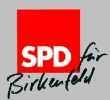 Социал-демократическая партия Германии_1