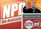 Национальная партия Германии_2
