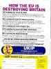 Партия независимости UKIP_108
