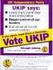Партия независимости UKIP_37