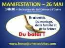 Движение за Францию -  MPF_4