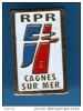 Объединение в поддержку республики -RPR