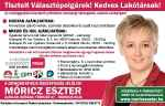 Венгерская социалистическая партия - MSZP