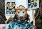 Партия защиты животных - PvdD_23