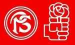 Социалистическая партия Аргентины
