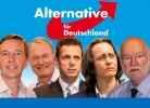 Альтернатива для Германии_15