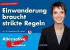 Альтернатива для Германии_5