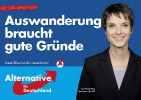 Альтернатива для Германии_8