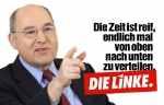Левая партия linke_100