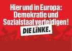 Левая партия linke_122