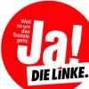 Левая партия linke_173