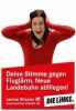 Левая партия linke_24