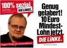 Левая партия linke_30
