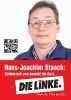 Левая партия linke_41