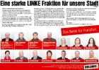 Левая партия linke_46