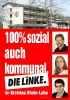 Левая партия linke_55