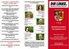 Левая партия linke_5