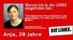 Левая партия linke_74