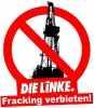 Левая партия linke_89