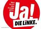 Левая партия linke_96