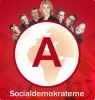 Социал-демократическая партия_11